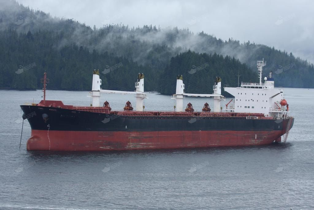 5.3万吨散货船价格_05今治5.3万散货国内可验